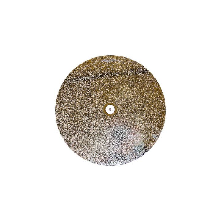 12 Inch 45 Grit Electroplated Diamond Disk