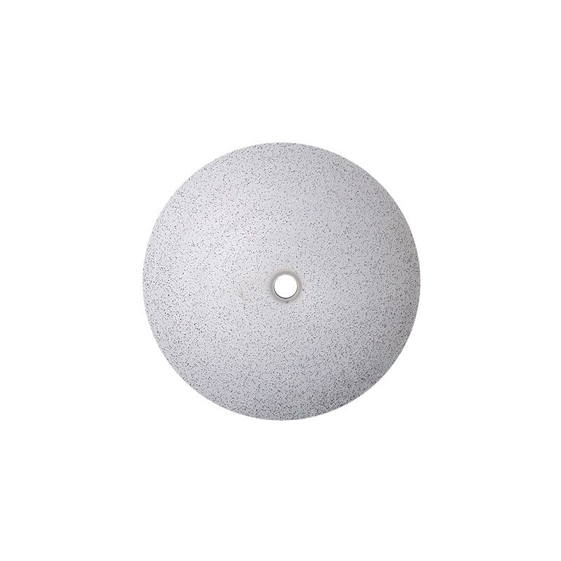 12 Inch 30 Grit Electroplated Diamond Disk