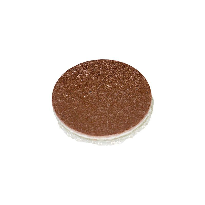 1 Inch 325 Grit Resin Diamond Smoothing Disk with Dual Lock Backing