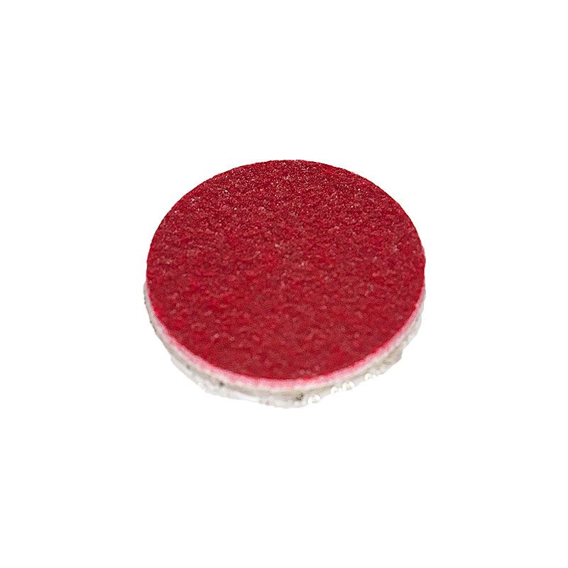1 Inch 600 Grit Resin Diamond Smoothing Disk with Dual Lock Backing